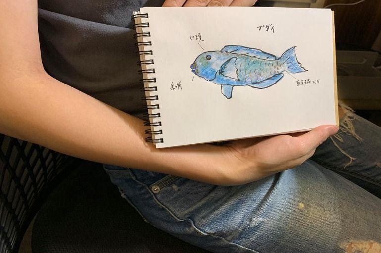 說魚來知魚│青衣魚