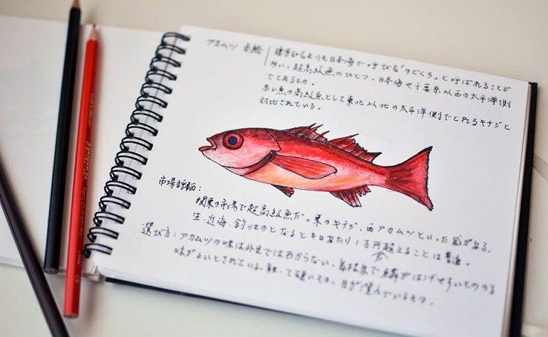 油脂滿分的紅喉魚