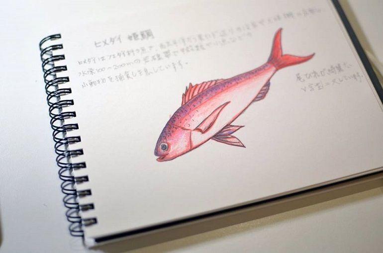 姬鯛魚一夜干