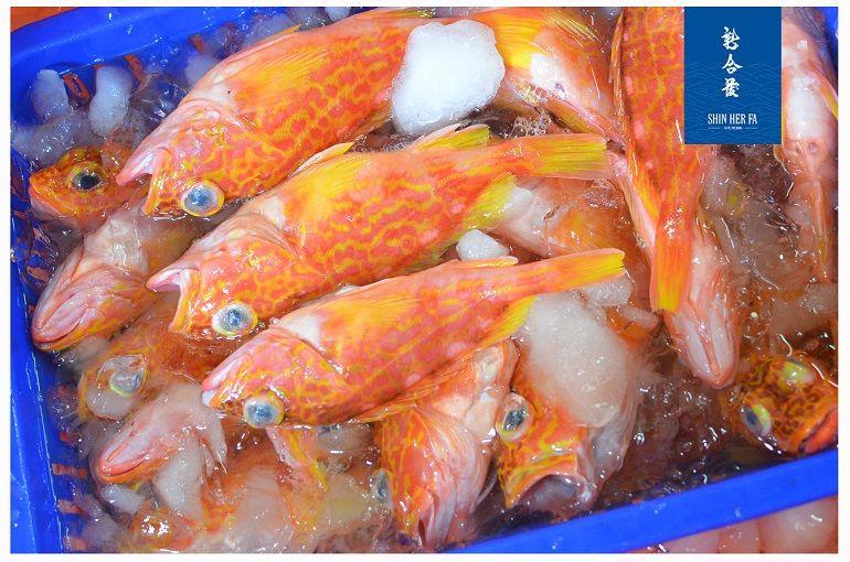 石狗公魚的命名由來
