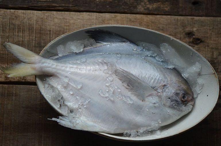 白鯧魚魚片