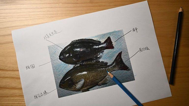 吃魚也要懂魚│黑毛魚