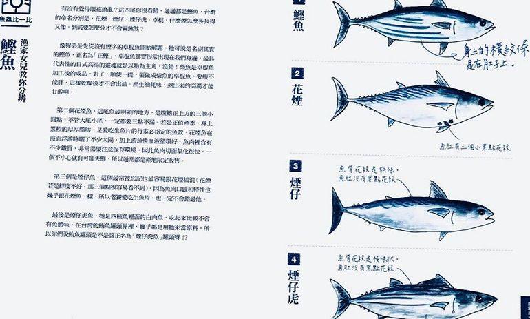 都叫鰹魚有什麼不一樣?