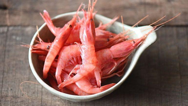 紅劍蝦不是你想的那種劍蝦
