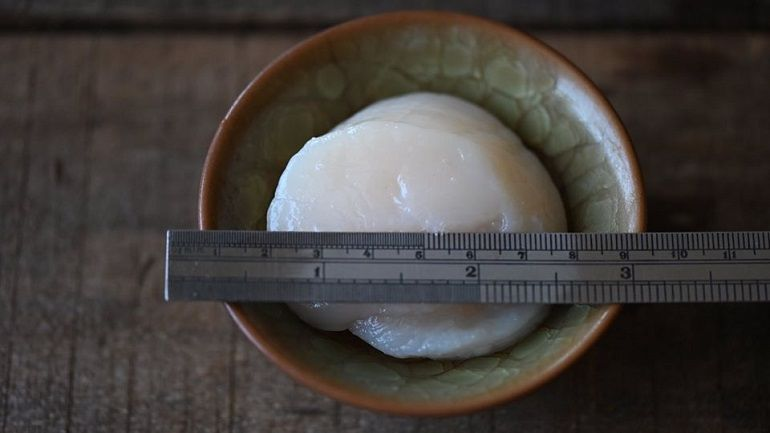 日本原裝生食級2L干貝